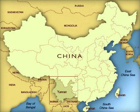 negocios chinos