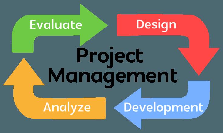que es un project manager