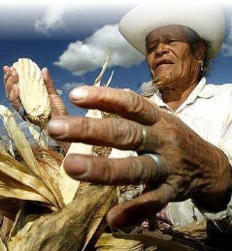 La agricultura orgánica en México