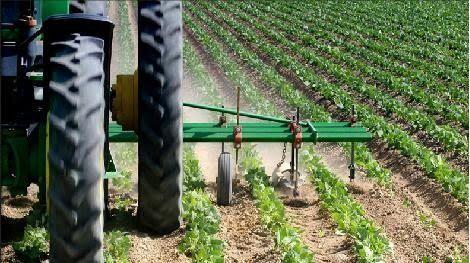 Los productos agrícolas