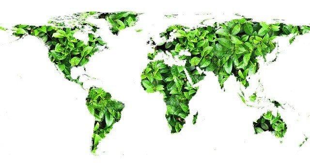 El medio ambiente en las empresas