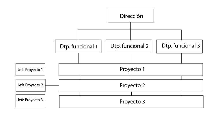 organigrama de empresa matricial