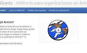 google grants awords ong