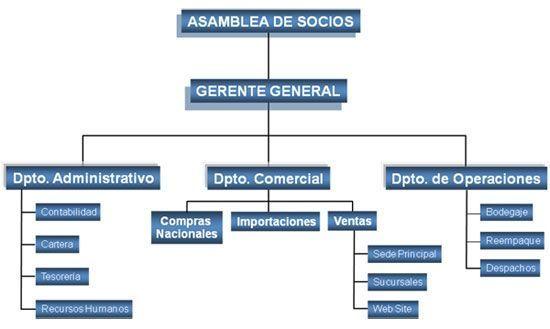 Organigrama de una empresa comercial gestion org for Organigrama de una empresa constructora