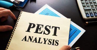 ejemplo de analisis pest